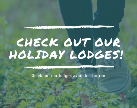 Holiday Lodges in Cornwall